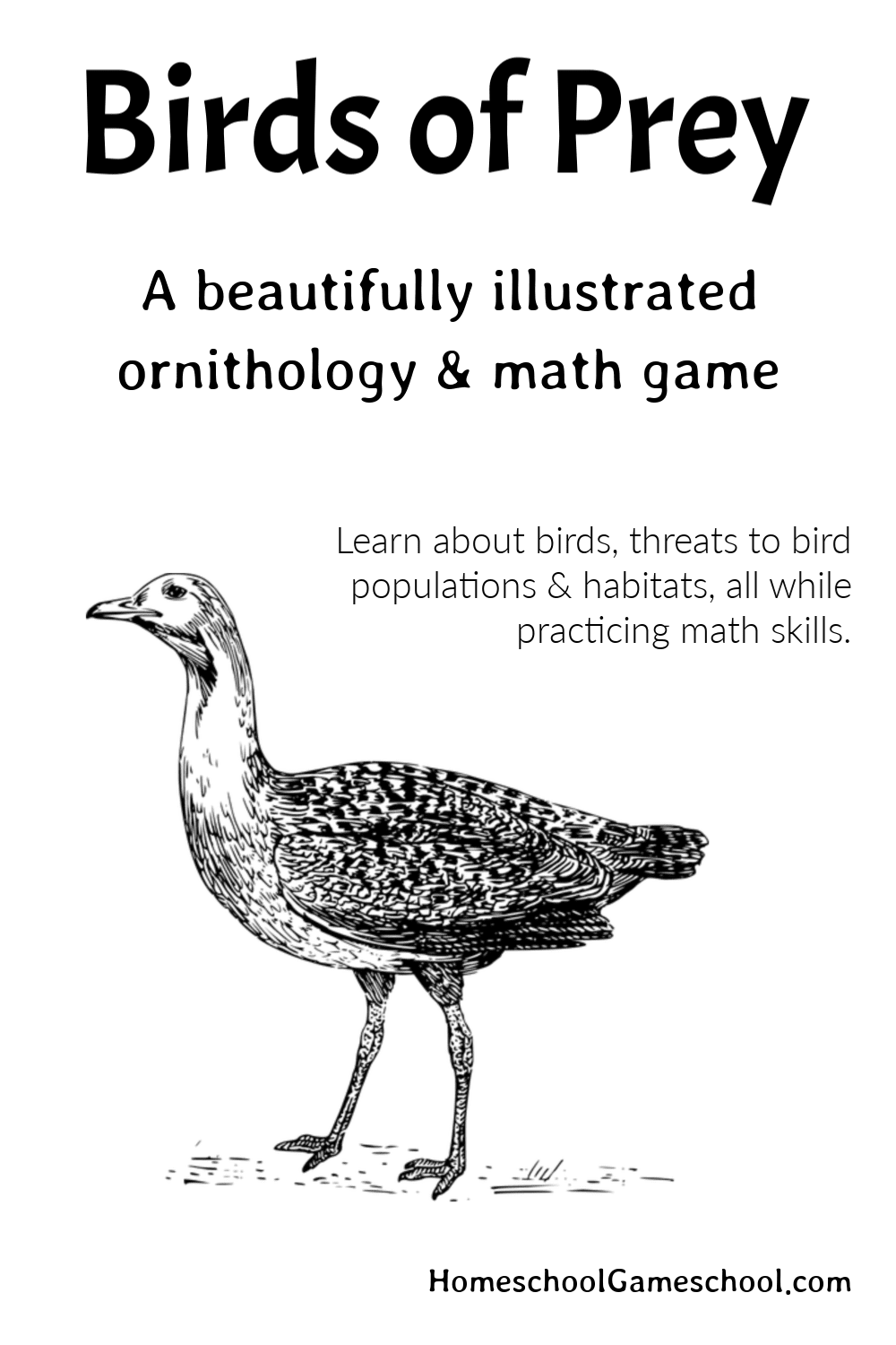 Birds of Prey Ornithology Game (Printable)