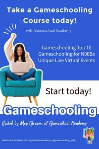 Gameschooling Classes, How to Gameschool with Gameschool Academy